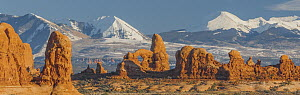 Turret Arch in winter, La Sal Mountains, Arches National Park, Utah - Jeff Foott