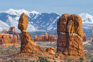 Balanced Rock with Turret Arch and La Sal Mountains, Arches National Park, Utah  -  Jeff Foott