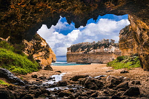 Cave along coast, Loch Ard Gorge, Port Campbell National Park, Victoria, Australia  -  Gary Bell/ Oceanwide