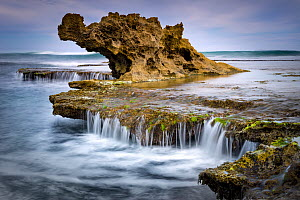Coastal rock formation, Dragon Head Rock, Mornington Peninsula, Victoria, Australia - Gary Bell/ Oceanwide