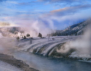 Geysers along river in winter, Yellowstone National Park, Wyoming  -  Tim Fitzharris
