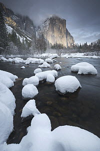 El Capitan above Merced River in winter, Yosemite National Park, California  -  Chase Dekker