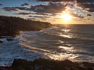 Coast, Bay of Fundy, Nova Scotia, Canada  -  Scott Leslie