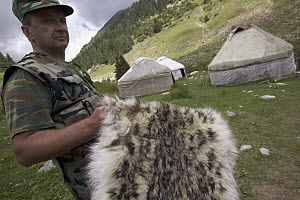 Snow Leopard (Uncia uncia) a member of the Gruppa Bars Snow Leopard anti-poaching team with a pelt which has been confiscated, Kyrghyzstan - Cyril Ruoso