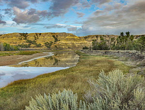 Little Missouri River, Theodore Roosevelt National Park, North Dakota  -  Tim Fitzharris