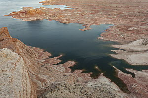 Reservoir with low water levels due to drought, Alstrom Point, Lake Powell, Glen Canyon National Recreation Area, Utah  -  Jeff Foott