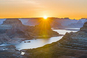 Padre Bay and Lake Powell from Alstrom Point at sunrise, Glen Canyon National Recreation Area, Utah  -  Jeff Foott