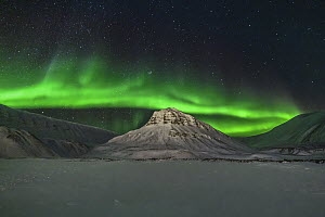 Northern lights over mountain, Longyearbyen, Iceland  -  Shane P. White