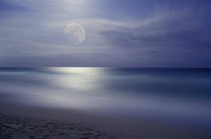 Full moon ove the Mediterranean Sea near Barcelona, Spain - Albert Lleal