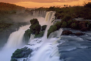 Cascades of the Iguacu Falls, the world's largest waterfalls, Iguacu National Park, Argentina - Thomas Marent