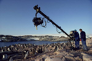 Producer Peter Basset with cameraman Paul Atkins using gibarm to film Adelie penguins for BBC series Life in the Freezer 1992 - Ben Osborne