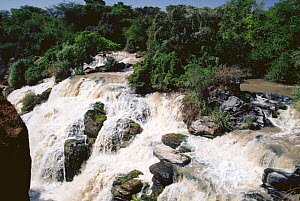 Awash falls in full flow, Awash river, Ethiopia, East Africa - Keith Scholey