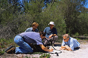 "BBC film crew on location in Western Australia, filming thynnid wasp for BBC series ""Private Life of Plants"", September 1993. R to L: Sir David Attenborough, Mike Salisbury, Richard Kirby  -  Neil Lucas"