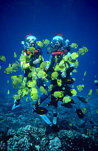 Presenters Martha Holmes and Mike De Gruy  surrounded by Lemon Butterflyfish (Chaetodon miliaris) Hawaii, on location for BBC NHU  series Seatrek 1991 - Georgette Douwma