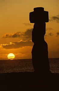 Moai with stone topknot on the clifftop at Hangaroa, Easter Island, with setting sun - Phil Chapman