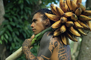 Marquesan with native banana crop for tv series Nomads of the Wind, 1992 - Mark Jacobs