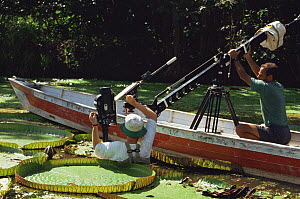 "Cameraman Tim Shepherd on location in Brazil, filming giant water lilies for BBC television series ""Private Life of Plants"", December 1993 - Neil Lucas"