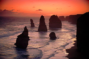 Twelve apostles rock formation at sunset. Port Campbell, Victoria, Australia  -  Tim Edwards
