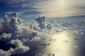 Aerial view of clouds and sea.  -  Jurgen Freund