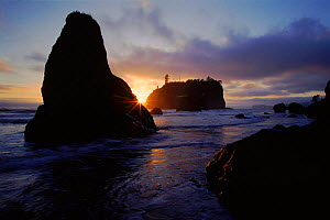 Ruby Beach at sunset. Olympic NP, Washington, USA  -  Tim Edwards