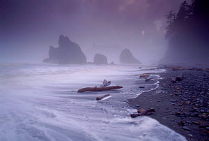 Ruby Beach in stormy conditions, July 1995. Olympic NP, Washington, USA  -  Tim Edwards