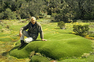 "Sir David Attenborough sitting on Giant Cushion plant. Mt. Ann Tasmania, on location for ""Private Life of Plants"" 1993 - NEIL NIGHTINGALE"