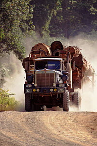 Lorry transporting timber logged from primary rainforest, Sabah, Borneo, Malaysia - Neil Lucas