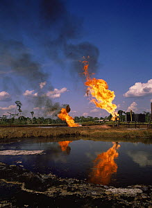 Burning off gas beside pool of waste water, Shushufindi oil prodcution site, Ecuador  -  MORLEY READ