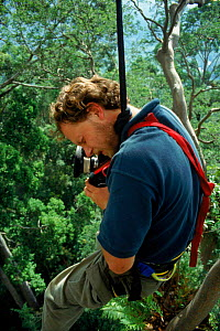 Richard Kirby filming high in rainforest on location for 'Private Life of Plants'. Sabah, South East Asia - NEIL NIGHTINGALE