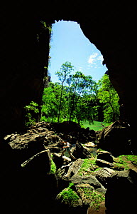 Looking out from a cave at the Green Lake. Ankarana NP, Madagascar - Phil Chapman