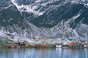 Abandonned whaling station at Grytviken, South Georgia, South Atlantic  -  Peter Scoones