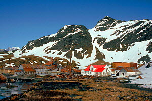 Abandonned whaling station, Grytviken, South Georgia  -  Peter Scoones