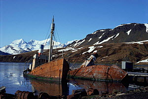 Old boats at abandonned whaling station, Grytviken, South Georgia, South Atlantic  -  Peter Scoones