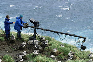 Camerman Paul Atkins and producer Peter Bassett film albatrosses with jimmy jib. Bird Is South Georgia November 1992 for Life in the Freezer  -  Peter Bassett