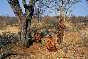 Kalahari Bushmen rest from tracking to dig for roots. Namibia - Keith Scholey