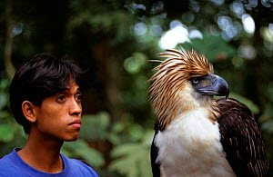 Monkey eating eagle (Pithecophaga jefferyi) with handler. Captive,  Philippines - Neil Lucas