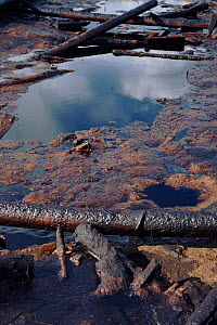Waste oil in wooden oil disposal pit, Siberia. - DOMINIC JOHNSON