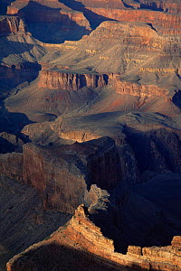 Looking down into Grand Canyon at dawn, Grand Canyon NP, Arizona, USA  -  David Noton
