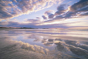 Beach with cloud reflections in wet sand, Feall Bay, Argyll, Scotland - Niall Benvie