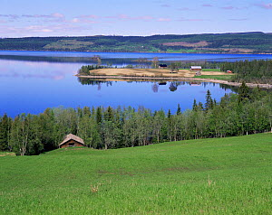 Looking down upon Lake Kallsjon in the summer with holiday traditional wooden chalets on edge of lake, Jamtland, Sweden - Bengt Lundberg