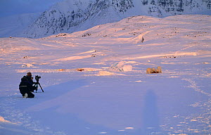 "Martin Saunders on location filming Polar bears for BBC programme ""Polar Bear Special"", Svalbard, Norway 1996  -  Mats Forsberg"