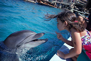 Bottlenose dolphin and child face to faceI Red Sea, Eilat, Israel. Model released.  -  Jeff Rotman