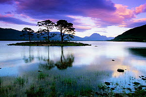 Loch Maree, Ross and Cromarty. Scotland.  -  Tim Edwards