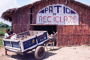 Waste recycling project, Pro Pueblo Foundation, Manglaral to town, Ecuador  -  Pete Oxford