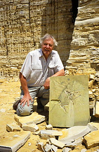 """David Attenborough with fossil archaeoptryx, on location for BBC television series """"Life of Birds"""", Germany, 1996  -  Mark Payne-Gill"""