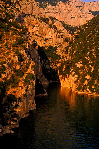 Gorge du Verdon, Provence, France, Europe  -  Ross Couper-Johnston
