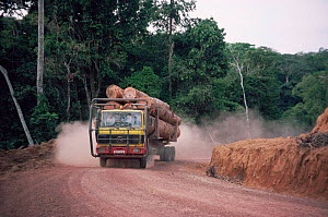 Lorry carrying timber out of rainforest, active deforestation in Gabon, also the road makes forest accesible for hunting  -  Bernard Walton