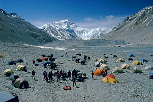 Base camp and yaks, Rongbuk Glacier, Mt Everest in distance, Tibet - Leo & Mandy Dickinson