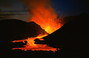 Lava fountain and subsequent flow from active Kimanura volcano, Virunga NP, Democratic Republic of Congo, formerly Zaire  -  Jabruson