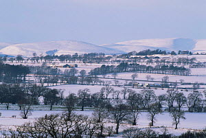 South Esk Valley winter landscape, Montrose, Tayside, Scotland  -  Niall Benvie